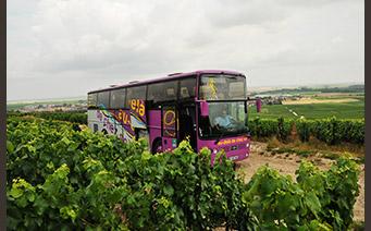 Bus Visite - Richard Dailly - œnotourisme Itinéraire Y - Trajectoire Vin