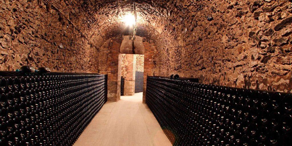 Cave - Richard Dailly - œnotourisme Itinéraire Y - Trajectoire Vin